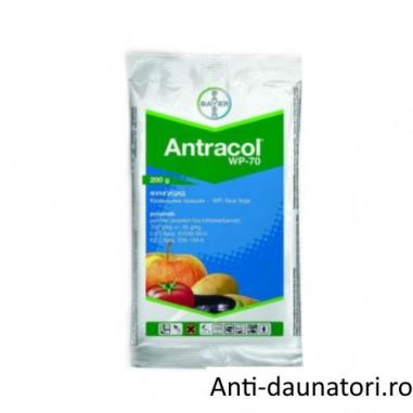 Fungicid de contact Antracol 70 wp 200 gr.