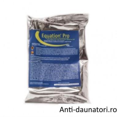 Fungicid sistemic local pentru combaterea manei la legume Equation Pro 100 gr.